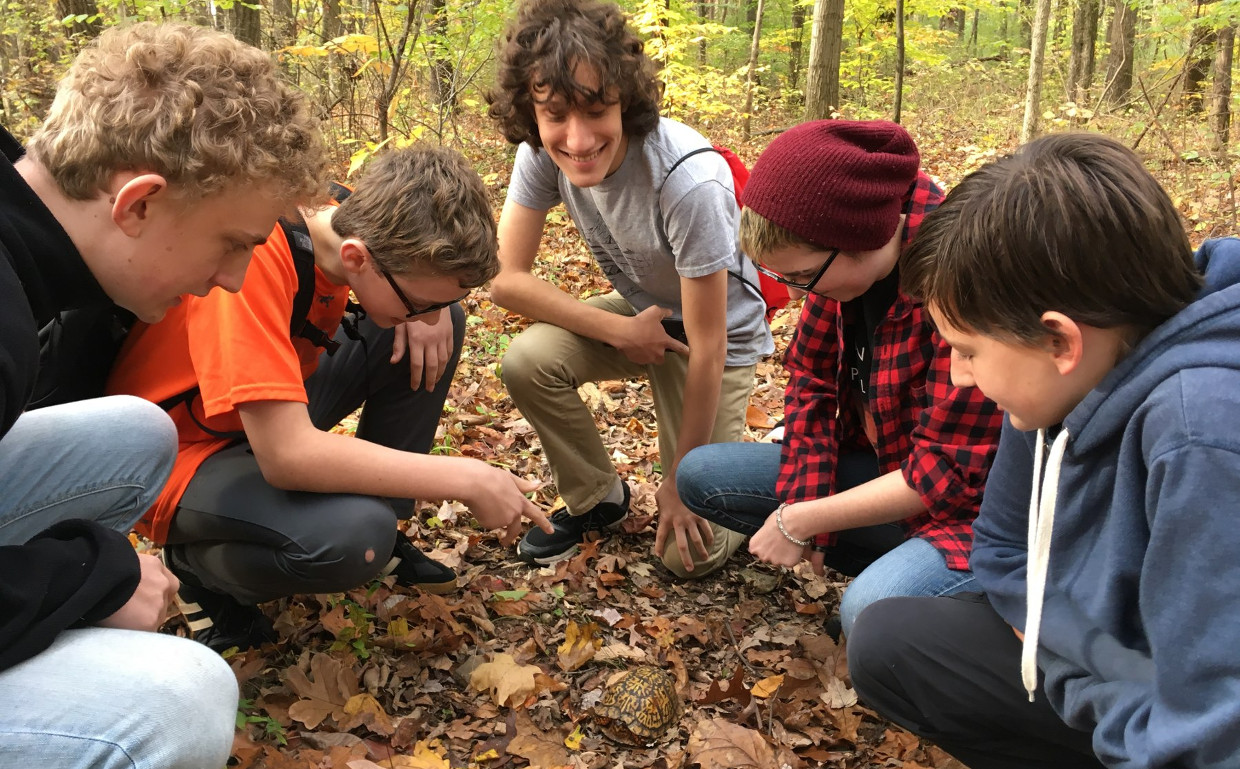 RLC teenagers crouched down, studying a box turtle